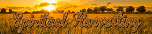 Marriage & Blended Families | Spiritual Harvesting by Elder Jerry Commean Image